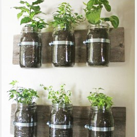 DIY Indoor mini herb garden racks