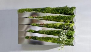 Fabulous indoor herb gardens from Miroir en Herbe