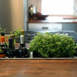 mini indoor herb garden wine drop box in wood countertop