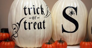 Monochrome painted pumpkins