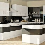 Black white gloss monochrome kitchen