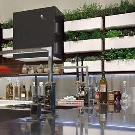 modern white green stainless steel kitchen worktops indoor herb garden planters plant wall
