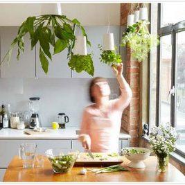 sky planters ceiling suspended indoor herb garden