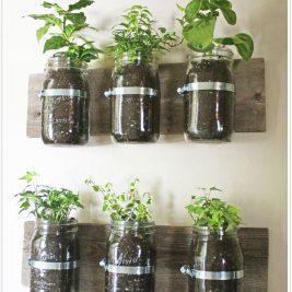 DIY Indoor mini herb garden racks