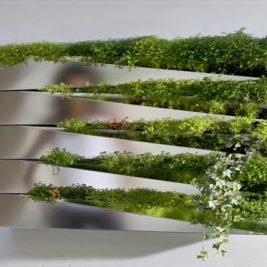 Silver Mirror Metallic salad wall indoor kitchen herb garden Miroir en Herbe